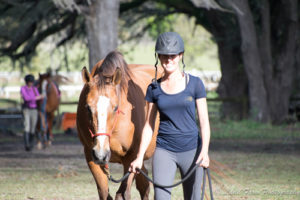 Niva And Anna Horse Protection